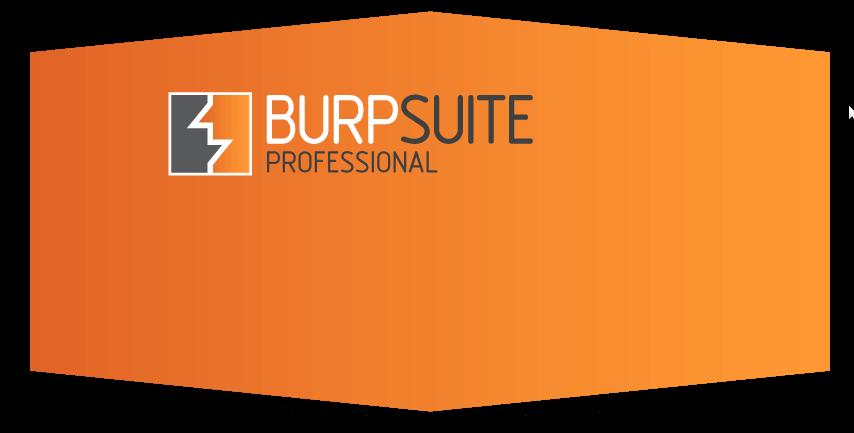 Burp Suite Pro v1 6 03 Crack